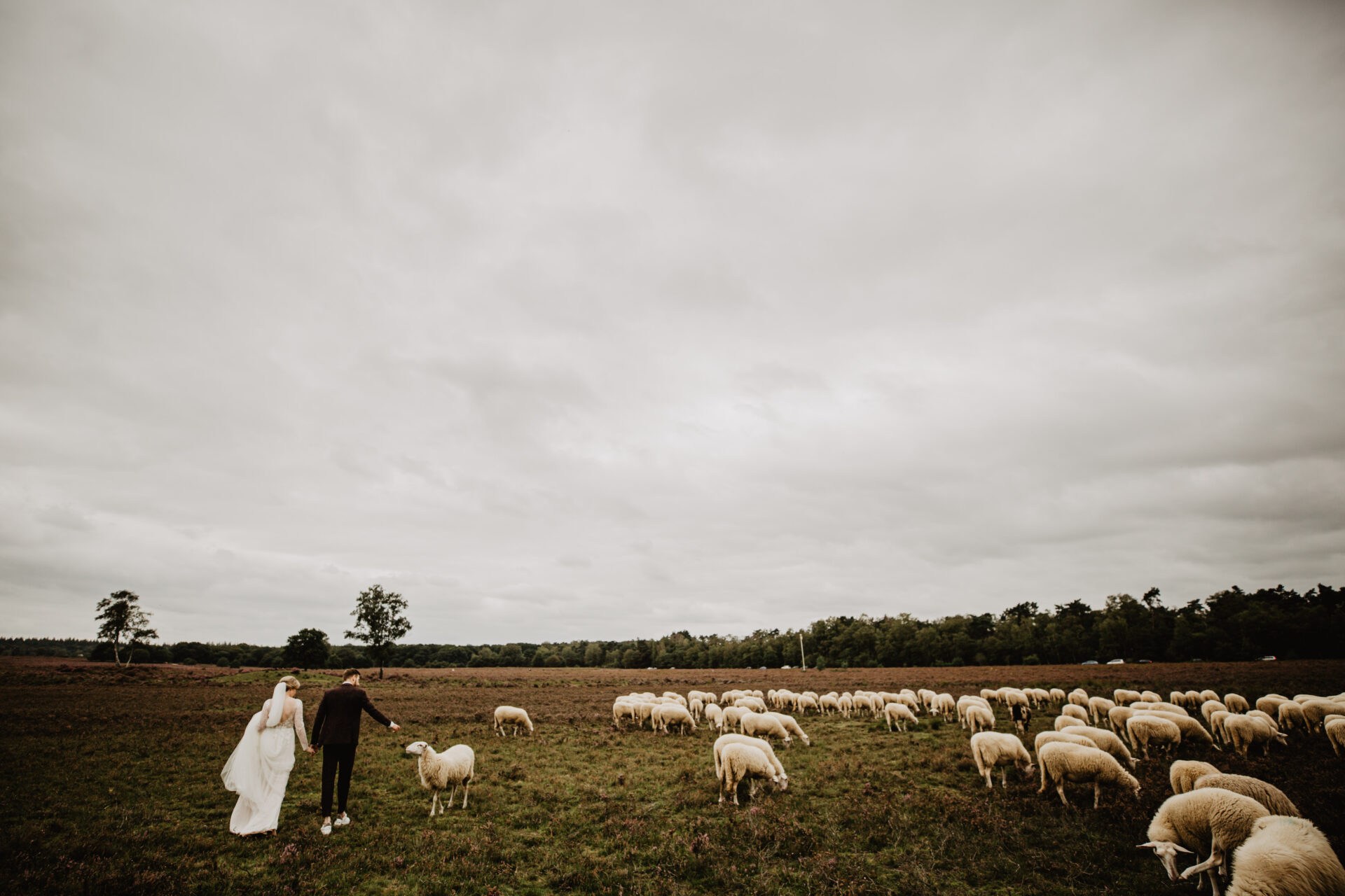 Bruidsfotografie Ermelo heide